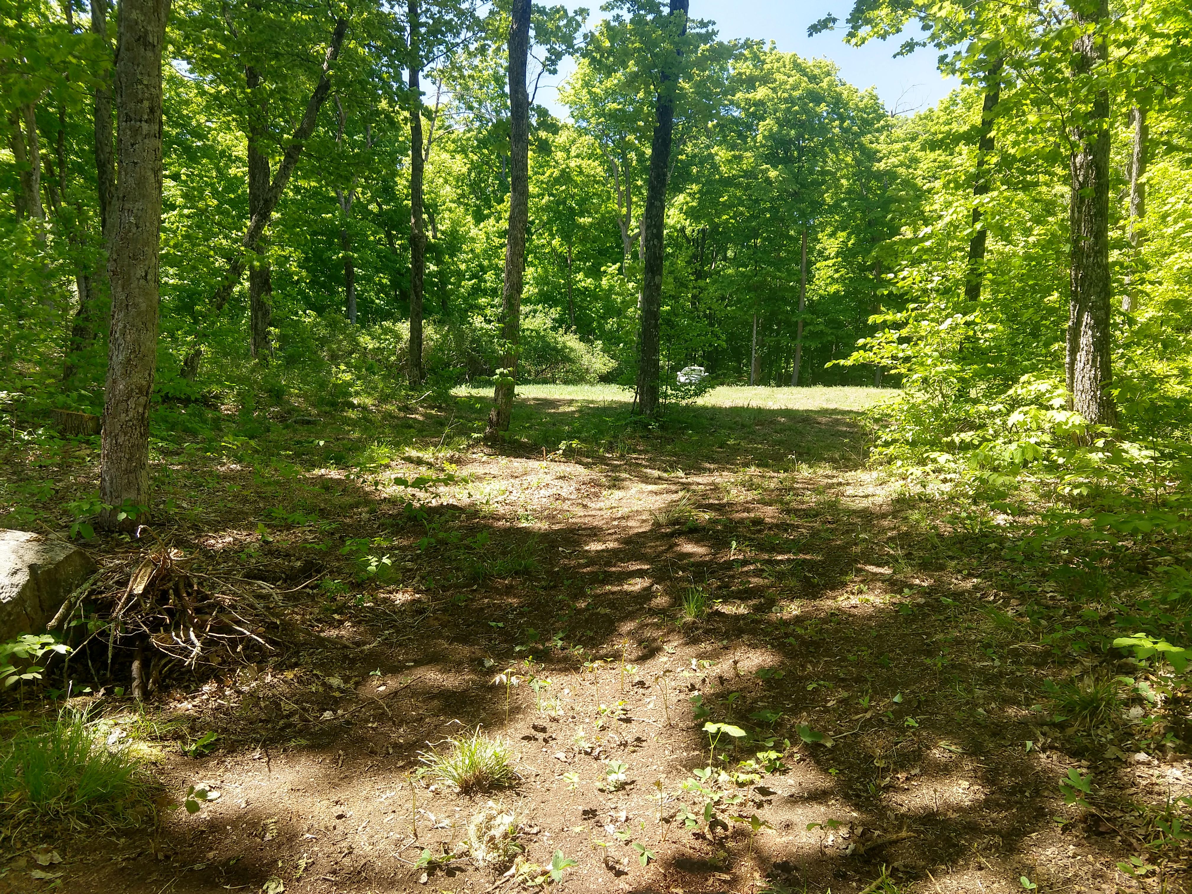 Almost Lane Frontenac, Frontenac, Ontario  K0H 1C0 - Photo 4 - RP6675509571