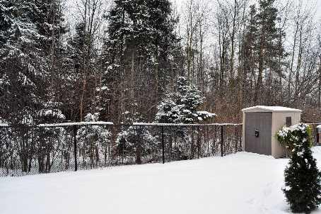 114 Ner Israel, Vaughan, Ontario    - Photo 2 - RP6882564788